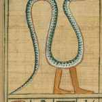 Libro dei Morti – Capitolo Uno