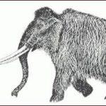 Paleolitico Mammut